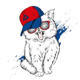 Lustige katze in einer kappe und in den gläsern