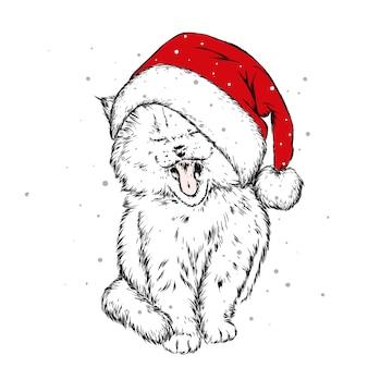 Lustige katze in einer weihnachtsmütze und einem schal. neujahr und weihnachten.