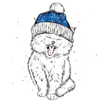 Lustige katze in einer weihnachtsmütze
