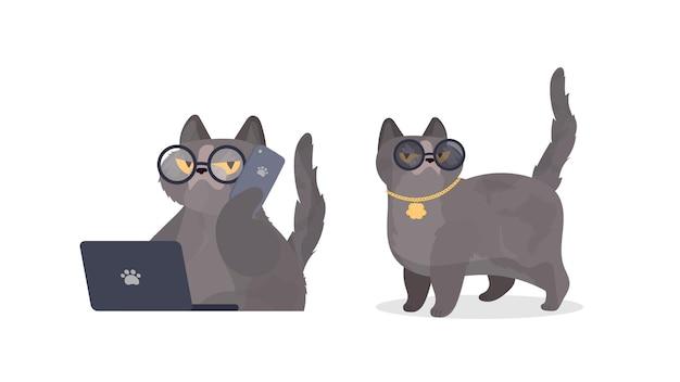 Lustige katze mit brille. katzenaufkleber mit ernster optik. gut für aufkleber, t-shirts und postkarten. isoliert. vektor.