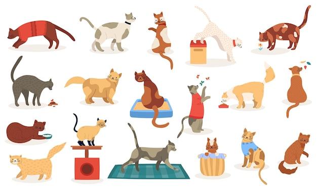 Lustige katzen. nette entzückende kätzchenkatzen, schlafendes spielen stammbaumrassen haustiere, inländische kätzchencharakter-illustrationsikonen gesetzt. haustierkatze, stammbaum und rassecharakter