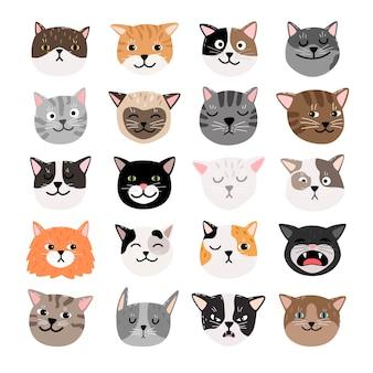 Lustige katzen stehen emotionen gegenüber