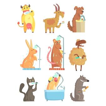 Lustige tiere, die duschen und waschen, eingestellt für. hygiene- und pflegekarikatur detaillierte abbildungen