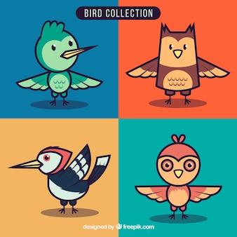 Lustige vogelsammlung