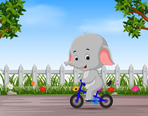 Lustiger elefant, der in die straße radfährt