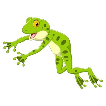 Lustiger frosch der karikatur, der auf weißem hintergrund springt