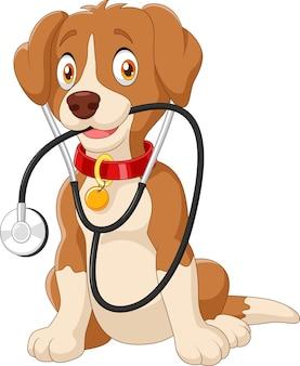 Lustiger hund der karikatur, der mit stethoskop sitzt