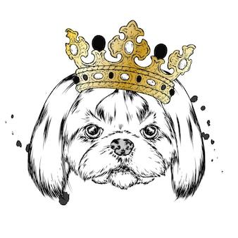 Lustiger hund in der krone