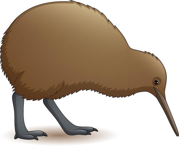 Lustiger kiwivogel der karikatur
