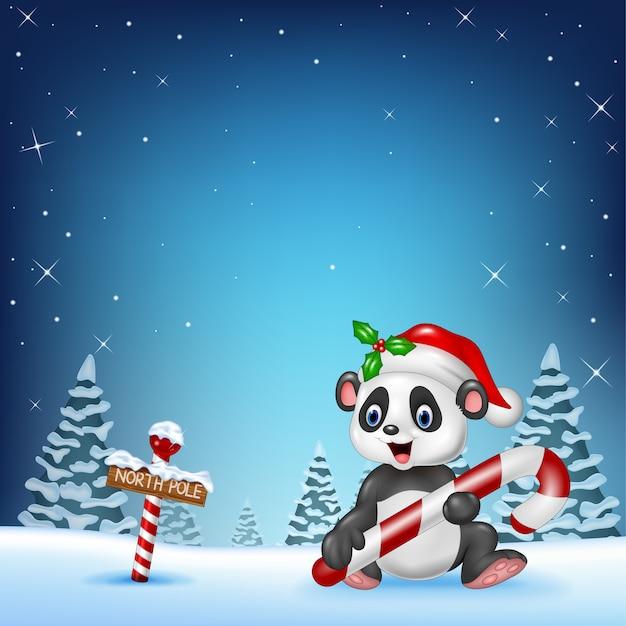 Lustiger panda der karikatur, der mit einem nordpfostenholzschild sitzt