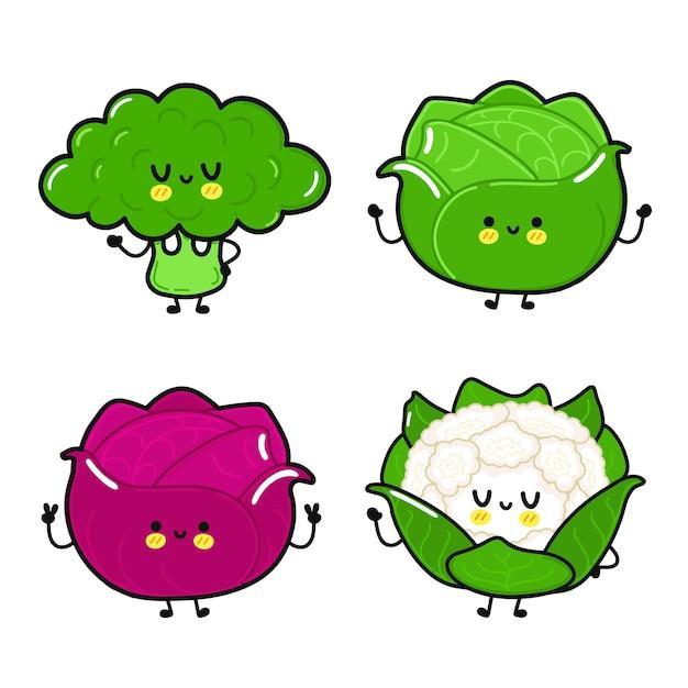 Lustiger süßer glücklicher weißkohl-rotkohl-brokkoli-blumenkohl-charakter-bündel-set