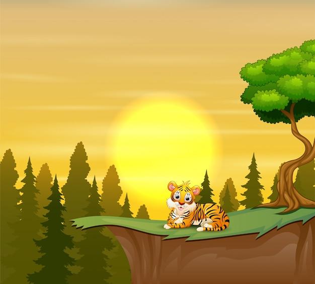 Lustiger tiger, der auf der klippe mit einem schönheitssonnenuntergang sitzt