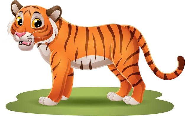 Lustiger tiger der karikatur im gras