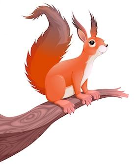 Lustiges eichhörnchen auf zweig vector cartoon isoliert tier