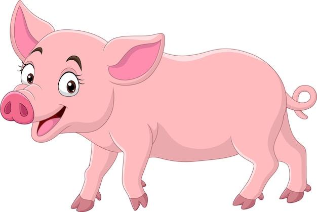 Lustiges schwein der karikatur auf weißem hintergrund