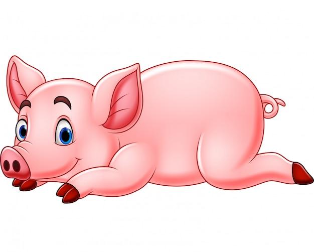 Lustiges schwein der karikatur