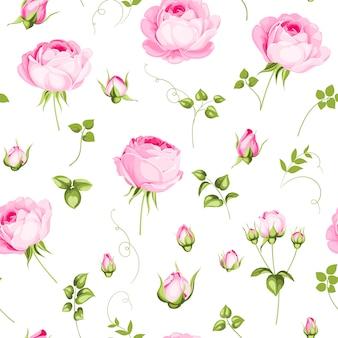 Luxuriöses rosen-tapetenpapier.