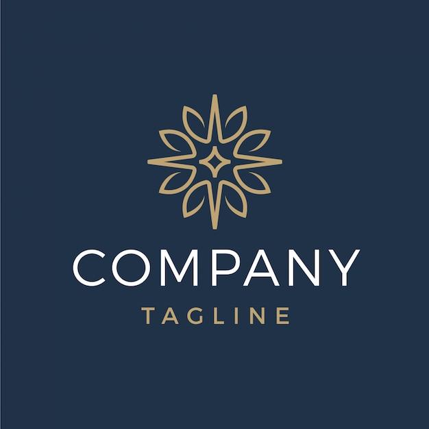 Luxus abstrakte blätter und stern-logo