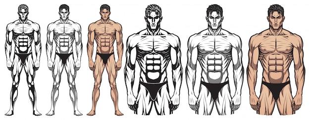 Männlicher bodybuilder-voller körper