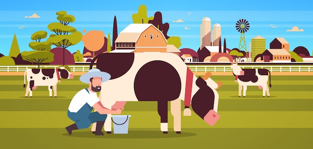 Männlicher landwirt, der kuh in der eimerfarm-haustierlandrinderfrischmilch-ackerlandscheunenlandschaftslandschaft melkt