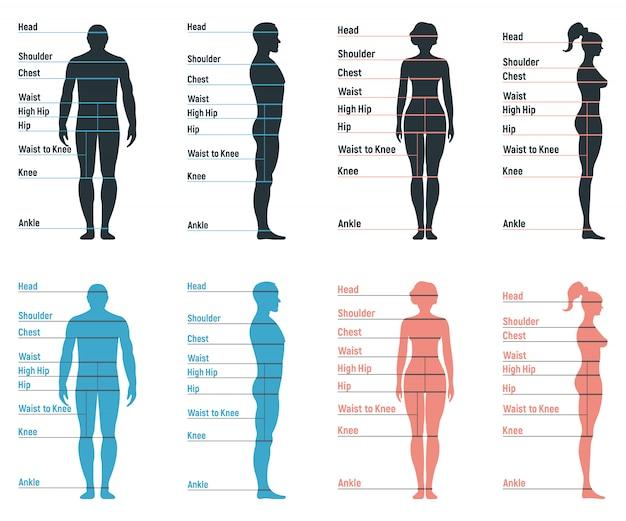 Männlicher und weiblicher größentabellenanatomie menschlicher charakter, leute dummy-front und ansichtsseitenkörpersilhouette, isoliert