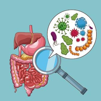 Magenschmerzen bakterien und virus cartoons
