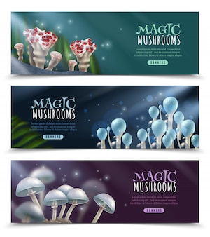 Magic mushrooms horizontal banner set