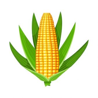 Mais. isolierte reife kornähre. gelber maiskolben mit grünen blättern. sommerfarm designelement