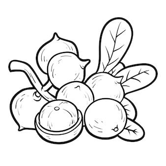 Malbuch für kinder, macadamia