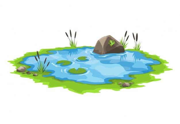 Malerischer wasserteich mit schilf und steinen herum. das konzept eines offenen kleinen sumpfsees im natürlichen landschaftsstil. grafikdesign für die frühjahrssaison