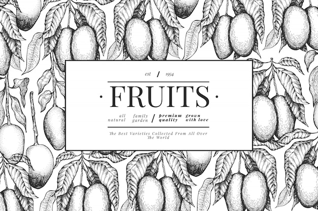 Mango design vorlage. hand gezeichnete tropische fruchtillustration des vektors.