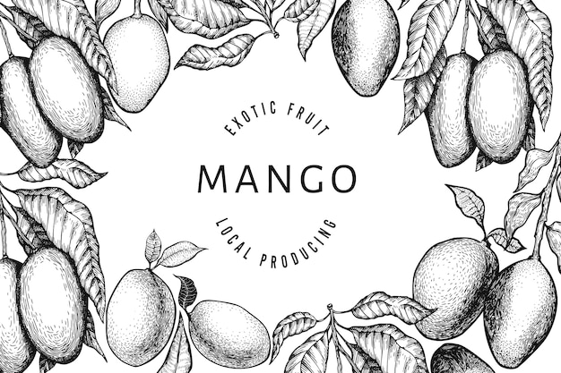 Mango design vorlage