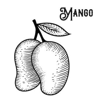 Mango hand gezeichnet