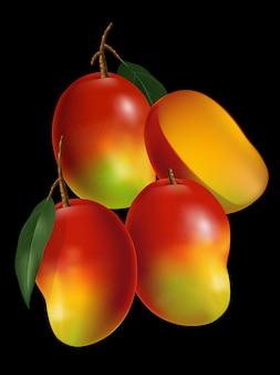 Mango realistische illustration mit blatt & geschnittener mango