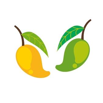 Mangofrucht in flacher darstellung