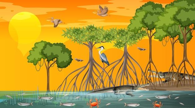 Mangrovenwaldlandschaftsszene bei sonnenuntergang mit vielen verschiedenen tieren