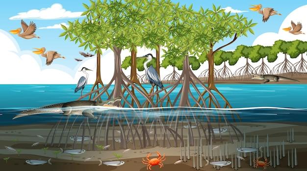 Mangrovenwaldlandschaftsszene tagsüber mit vielen verschiedenen tieren