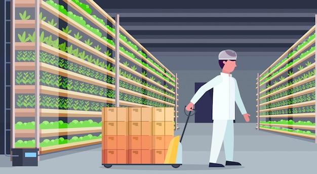 Mann landwirtschaftsingenieur in uniform tragenden palettenhubwagen mit pappkartons moderne organische vertikale farm innengrünpflanzen wachsen landwirtschaftskonzept horizontal