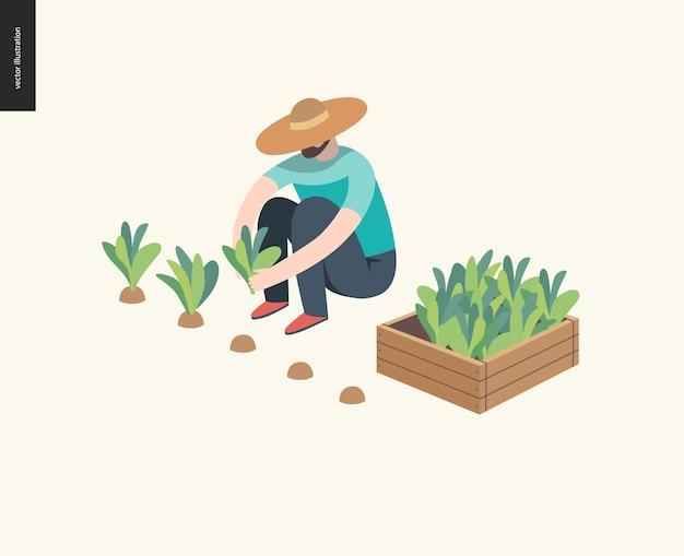Mann pflanzen