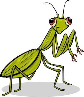 Mantis insekt cartoon illustration