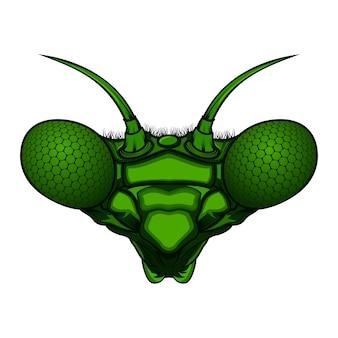 Mantis kopf vektor