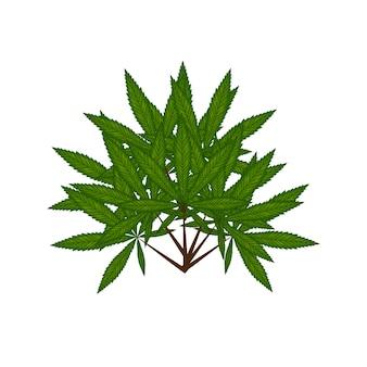 Marihuana-blatt auf reggae-flaggenillustration