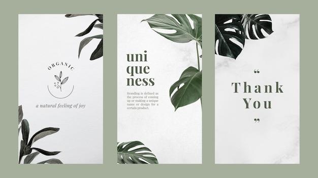 Marketing-vorlagenset für minimalistisches bannerdesign Kostenlosen Vektoren