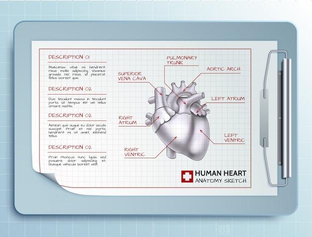 Medizinische werkzeugschablone mit papierblatt der zwischenablage und skizze der menschlichen herzillustration