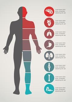 Medizinischer und medizinischer hintergrund