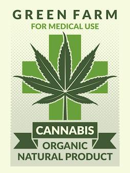 Medizinisches plakat mit illustrationen des blattes des marihuanas. banner natürliches marihuana zur verwendung in der medizin