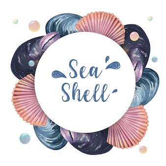 Meeresflora und -fauna-sommerzeitreise des muschelkranzes auf dem strand