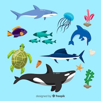 Meereslebewesen charakter sammlung