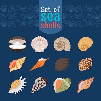 Meeresmuschel- oder vektormuschelsymbole im flachen stil für sommerdesign