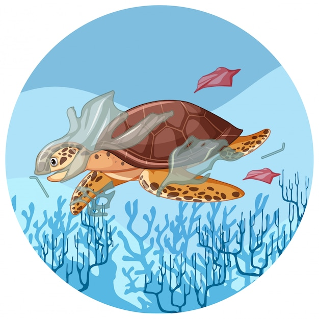 Meeresschildkröte mit plastiktüten unter wasser